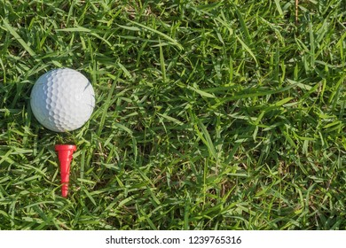 Golf, sports turf has been popular with the older color filtering.