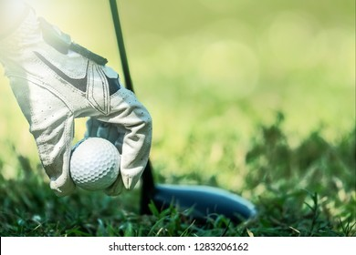 golfer hand with glove picking up golf ball from rough