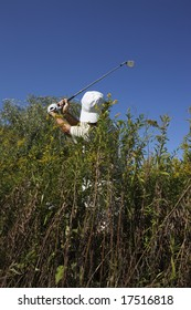 Golfer hitting out of deep weeds.