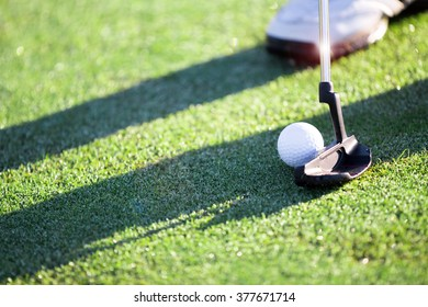 Golfer hitting a putt on the green.