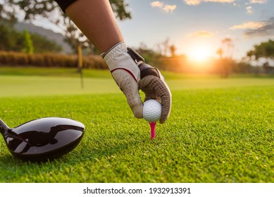Golfer hold golf ball put on tee by black and white glove with sunlight ray blur green golf course background,