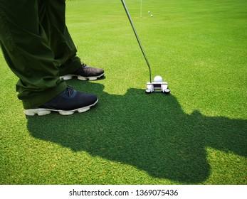 Golfer on training putt golf ball on the green