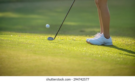 Golfer pitch the ball around the green