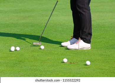 Golfer practice putting golf ball on the green golf, evening time.