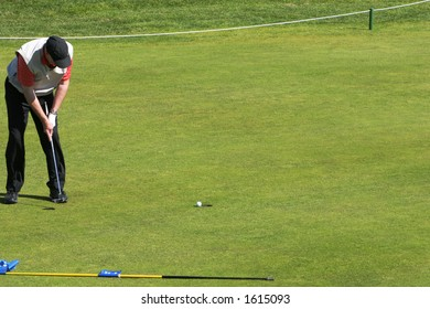 golfer putting in a tournament, golfball just about to go into the hole.