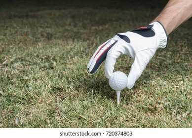 Golfer with white glof glove putt a golf ball on a tee in a course