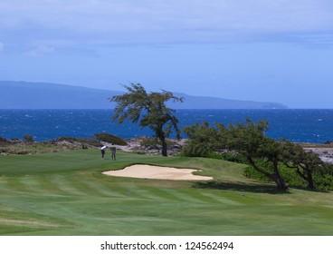 Golfers putting on Kapalua golf course in Maui. Hawaii
