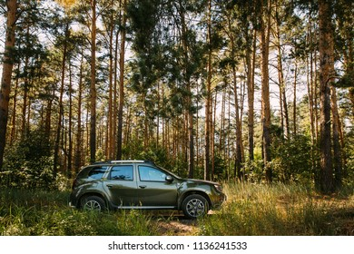 Gomel, Belarus - Junly 5, 2018: Car Renault Duster SUV in summer coniferous forest. Duster produced jointly by French manufacturer Renault and its Romanian subsidiary Dacia.