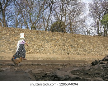 GONDAR, ETHIOPIA - MARCH 25 2012: Unidentified woman walks to church along ancient wall of Fasilides Castle, Gondar, Ethiopia. Gondar is UNESCO World Heritage Site and center of Orthodox Christianity.