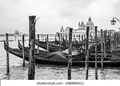 Gondolas and Santa Maria della Salute church in Venice, Italy. Black and white
