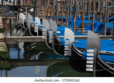 Gondole in the Grand Canal, Venice, Italy