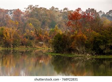 Gone Fishin in Fall