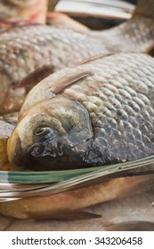 Good catch fisherman . Selective focus