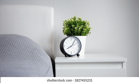 good morning concept - modern alarm clock and houseplant on bedside table