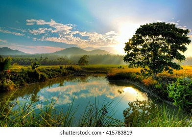 good morning from the countryside, artistic color/ Background