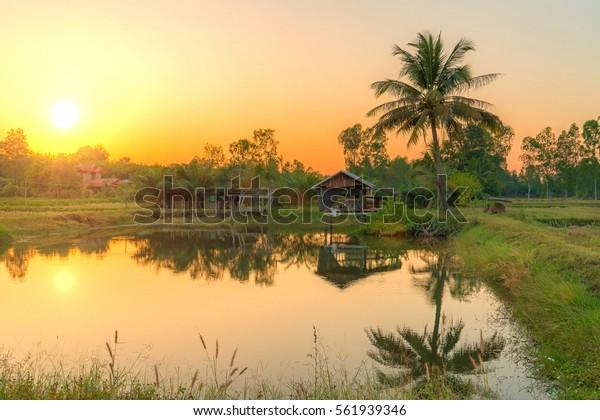 Good Morning House Country Sunrise Reflection Stock Photo (Edit ...