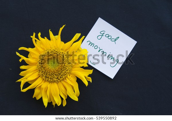Good Morning Message Card Sunflowers On Stock Photo (Edit Now) 539550892