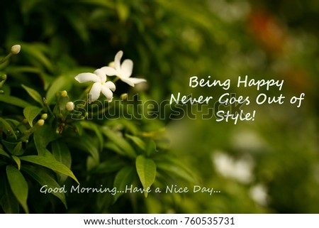 Good Morning Message On Garden Background Stock Photo Edit Now