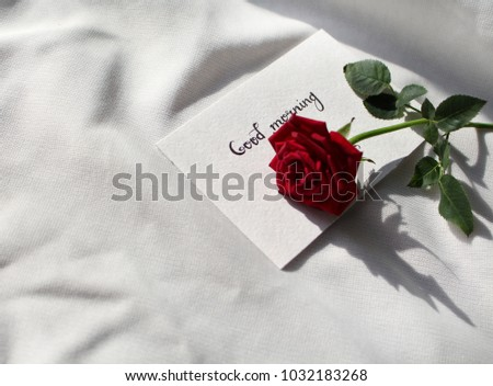 Good Morning Red Rose Little Card Stock Photo Edit Now 1032183268