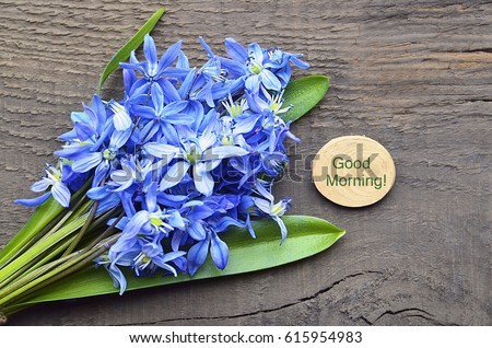 Good Morning Spring Concept Blue First Stock Photo Edit Now