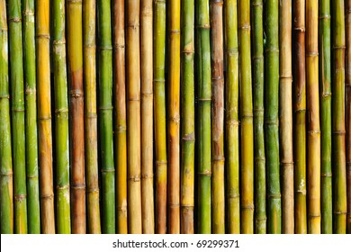good quality natural bamboo texture