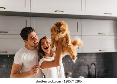 Good-humoured couple playing with pet in kitchen. Relaxed girl holding fluffy cat with smile.