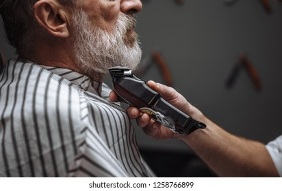 Good-looking bearded male Barber models beard for a handsome oldster at the barber shop. He is creating beard design of a grey-haired man with the electric shaver