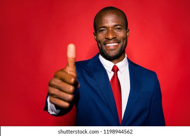 Good-looking chic chief classy confident gentleman give like excellent achievement advertising thumbs up stand in deep blue formalwear style blazer jacket isolated on red vivid background
