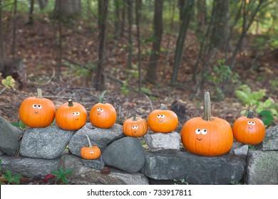 Googly eyed pumpkins sitting on rocks