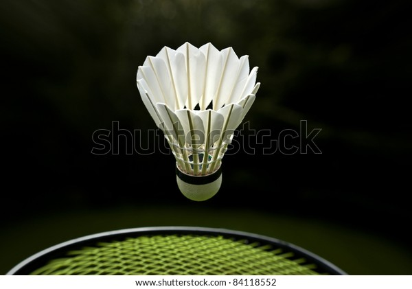 Goose feather badminton shuttlecock and racket