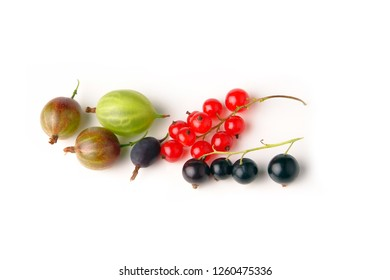 gooseberry, black and red currant isolated on white background - Image