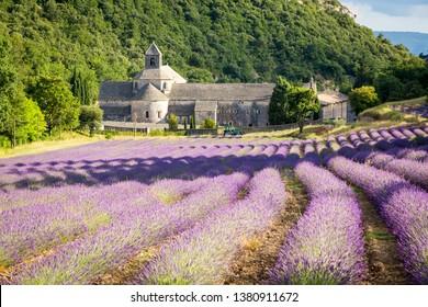 GORDES, FRANCE - JUNE 28, 2017: Abbaye de Sénanque with lavender field, near Gordes village, Vaucluse, Provence, France