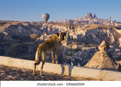 Goreme, Cappadocia, Turkey -November 15, 2017: Flights of tourists on balloons at dawn over beautiful mountains near the town of Goreme