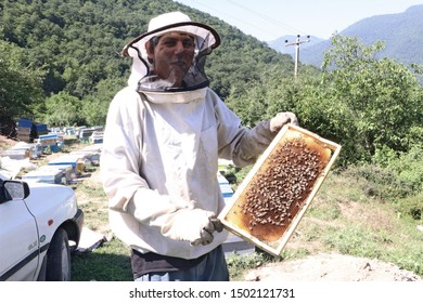 Gorgan, Iran - March 20 2019 - Beekeeper shows honeycomb