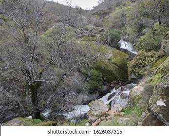 The Gorge of the Nogaledas in the Jerte Valley. Natural Park of the Sierra de Gredos. Cáceres Province. Estremadura. Spain