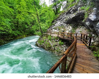 Gorge with river in Slovenia