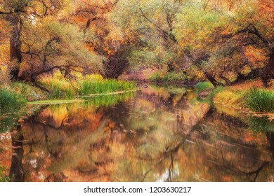 Gorgeous autumn forest with long exposure river running through