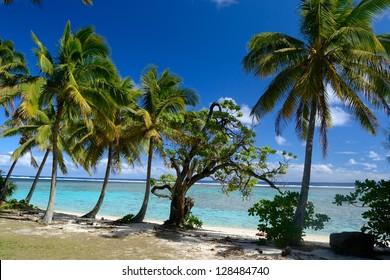 The gorgeous beach and sea of Rarotonga, Cook Islands, Pacific Ocean