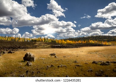 Gorgeous bright autumn view of Dixie National forest with a large field, lava rock, and autumnal leaves in Southern Utah