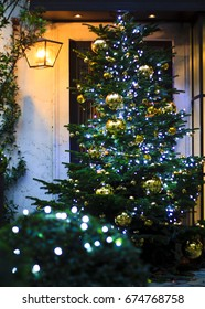 Gorgeous decorated christmass tree at the house entrance in Paris, France.