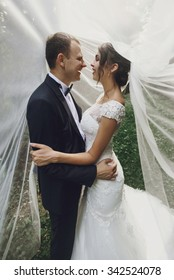 gorgeous elegant luxury bride and stylish groom hugging  on the background of trees in a park