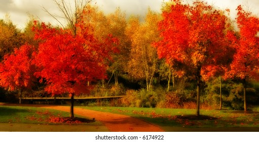 Gorgeous fall colors
