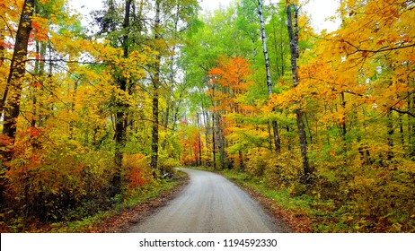 Gorgeous fall colors grace this photo taken within