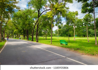 Gorgeous green trees and green grass with nice blue sky in Summer. Bench on the grass for relaxing in sunny day - Bangkok, Thailand