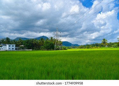 Gorgeous landscape in kerala will make you mind blowing