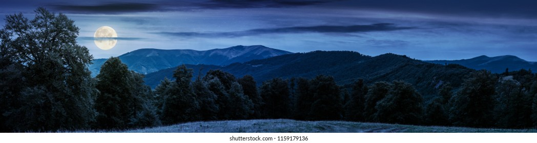 gorgeous mountain panorama in summer at night in full moon light. primeval beech forest around alpine meadow. distant ridge beneath the cloudy sky