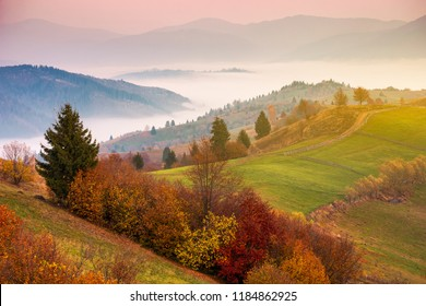 gorgeous mountainous countryside at sunrise. beautiful rural area. distant valley full of fog