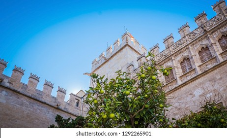 A gorgeous photo of the patio of the Llotja, known as La Lonja, an popular building used for commercial purpose during the Middle and Early Modern Ages in the city of Valencia, in Spain, Europe