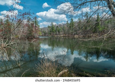 A gorgeous setting of Byrd lake in central Tennessee in early spring with the bare trees sprouting new foliage and the fluffy clouds reflecting on the calm water on a bright sunny day