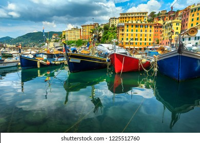 Gorgeous spectacular harbor, colorful mediterranean buildings with fishing boats and yachts, Camogli, Liguria, Italy, Europe